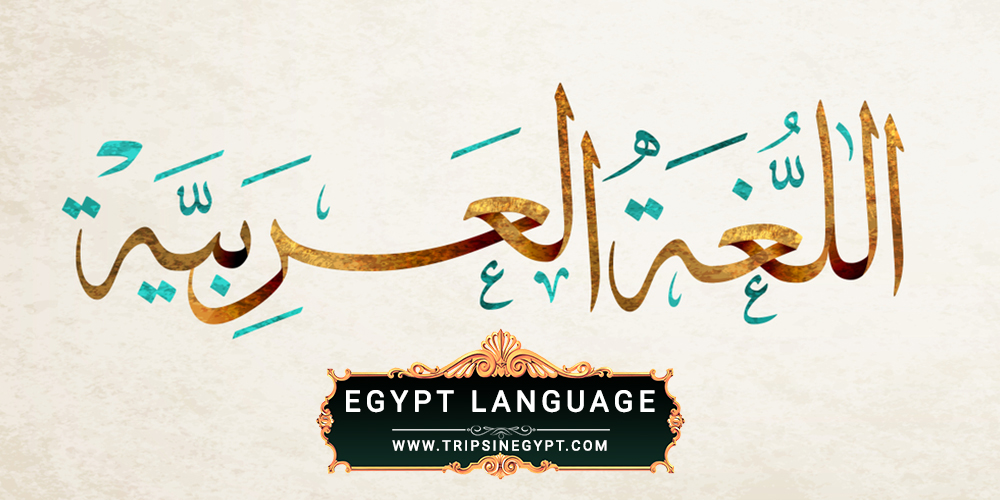 Egypt Language - Egypt Culture and Traditions - Trips in Egypt