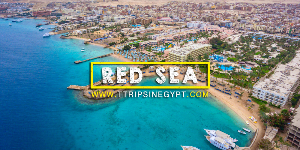 Red Sea - Egypt Tour Packages from Saudi Arabia - Trips in Egypt