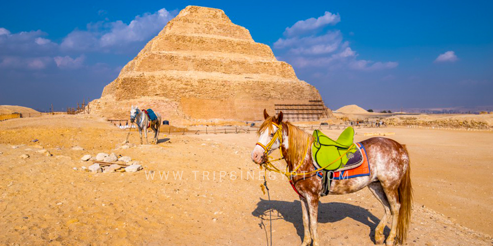 Saqqara Pyramid - 25 Things to Do in Cairo - Trips in Egypt