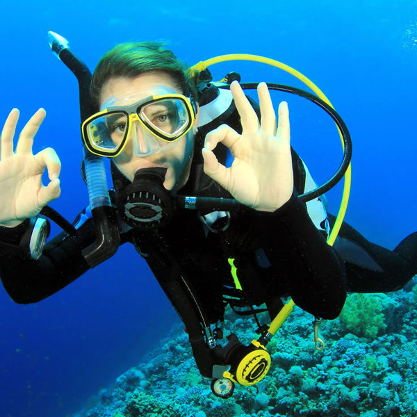 Things to Do in El Gouna - Trips in Egypt - Things to Do in El Gouna - Trips in Egypt