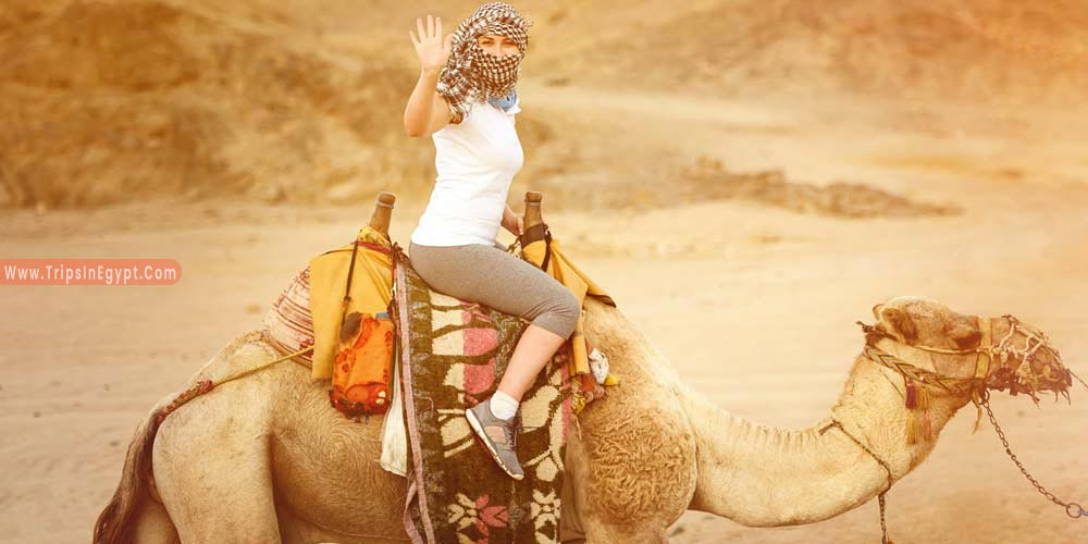 Camel Rides Hurghada - Things to Do in Hurghada - Trips in Egypt