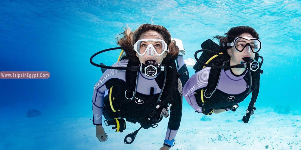 Diving in Hurghada - Things to Do in Hurghada - Trips in Egypt