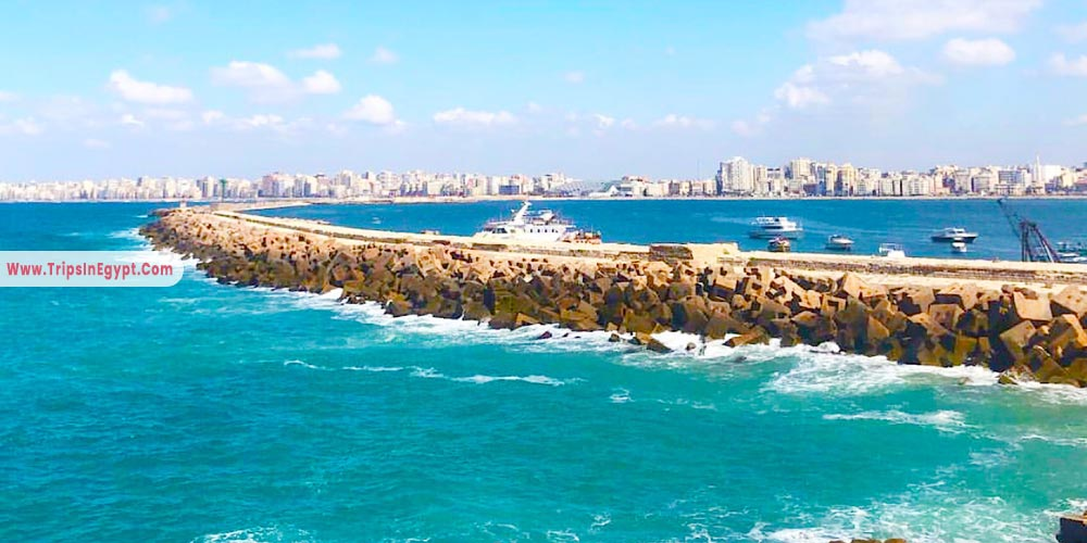 Mediterranean Sea Alexandria - Things to Do in Alexandria - Trips in Egypt
