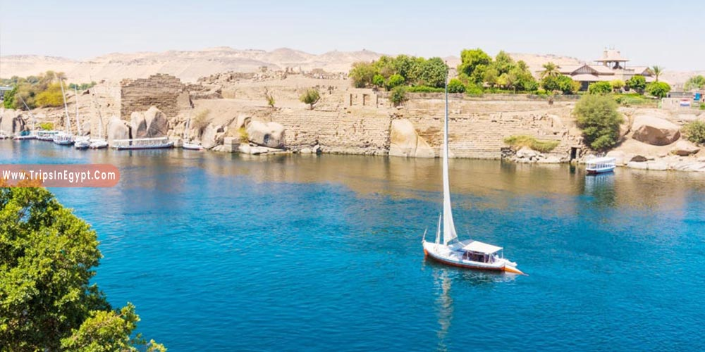 Nile River - Reasons to Visit Egypt - Trips in Egypt
