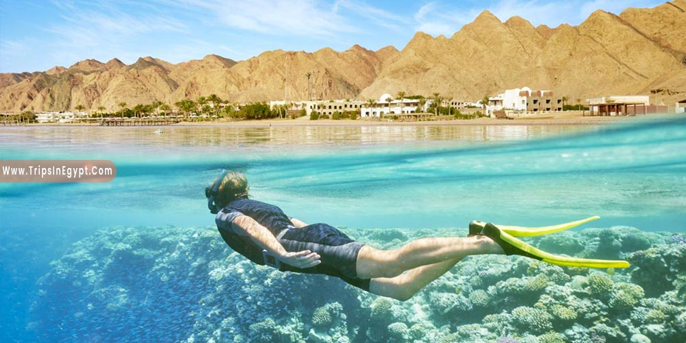 Red Sea - Reasons to Visit Egypt - Trips in Egypt