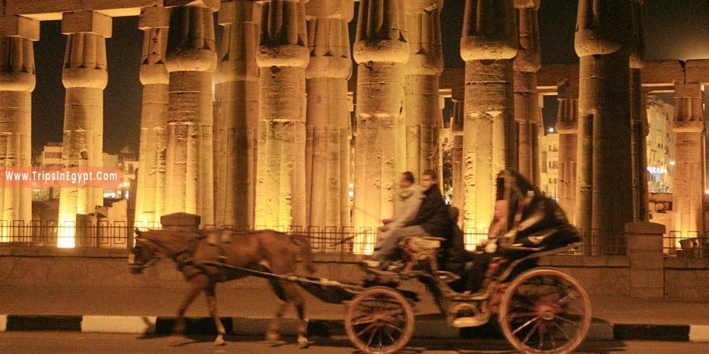 Riding Horse at Luxor in Night - Things to Do in Luxor at Night - Trips in Egypt