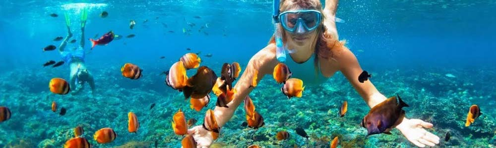 Red Sea Excursions - Trips in Egypt