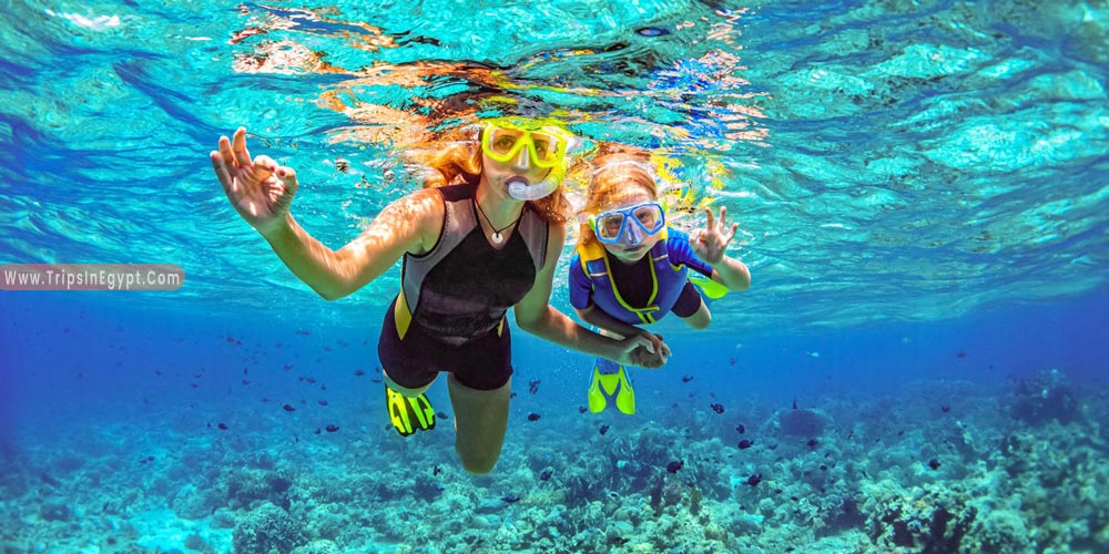 Snorkeling in Hurghada - Things to Do in Hurghada - Trips in Egypt