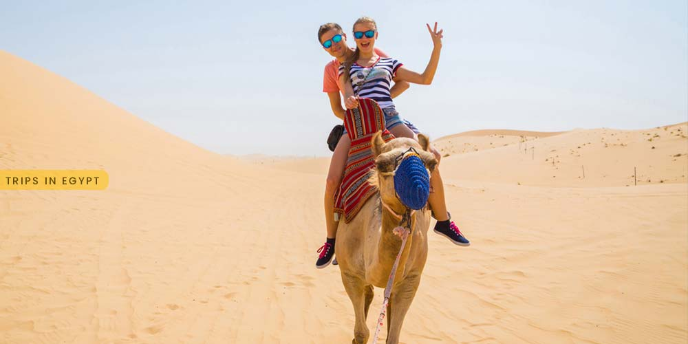 Camel Ride at Safaga Desert - Things to Do in Safaga - Trips in Egypt