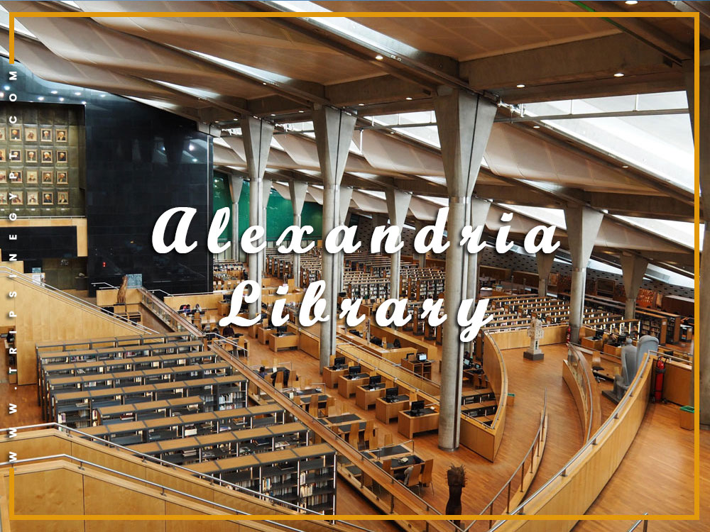 Alexandria Library - Activities to Do from El Gouna - Trips in Egypt