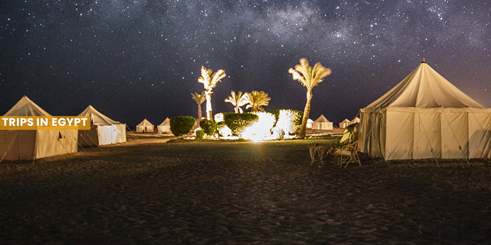 Astronomical Nights - Things to Do in Marsa Alam - Trips in Egypt