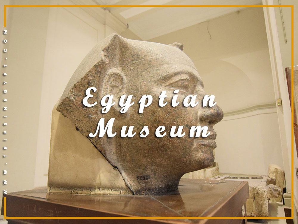 Egyptian Museum - Activities to Do from El Gouna - Trips in Egypt