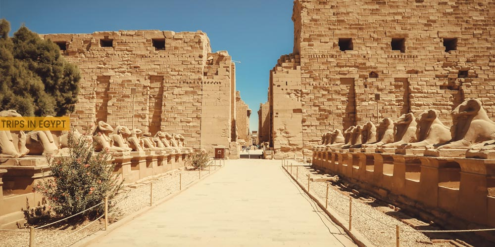Karnak Temple - Outdoor Activities to Do from Marsa Alam - Trips in Egypt