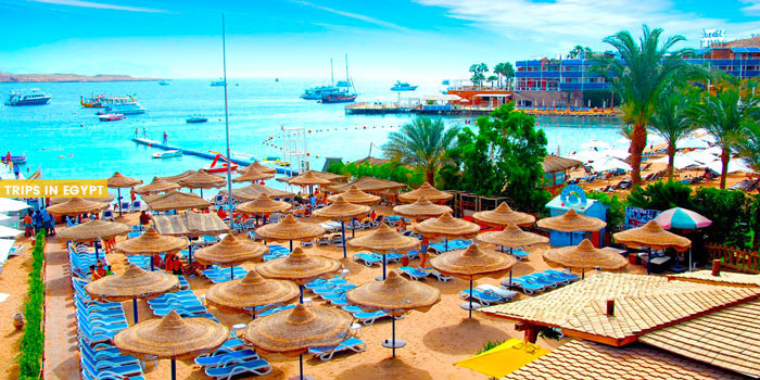 Naama Bay - Things to Do in Sharm El Sheikh - Trips in Egypt