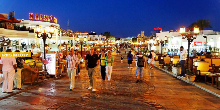 Nightlife - Things to Do in Sharm El Sheikh - Trips in Egypt