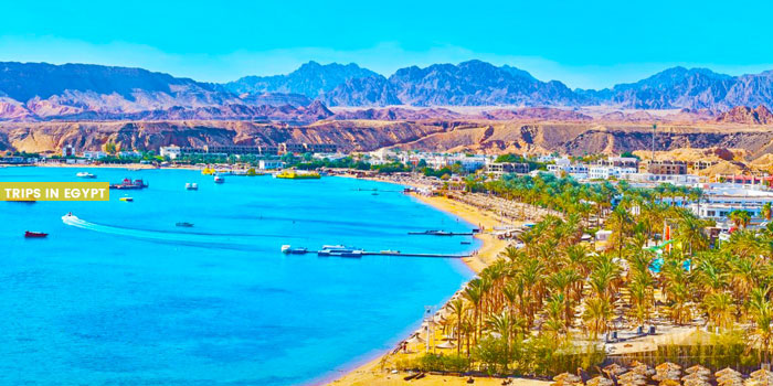 Ras Um Sid Beach - Things to Do in Sharm El Sheikh - Trips in Egypt