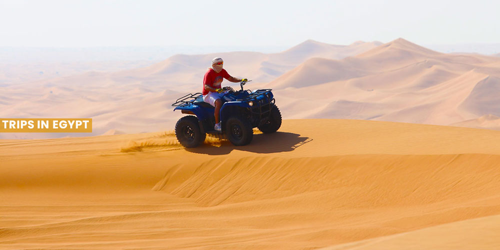 Safari Trip - Things to Do in Marsa Alam - Trips in Egypt