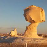 Bahariya Oasis - Trips in Egypt