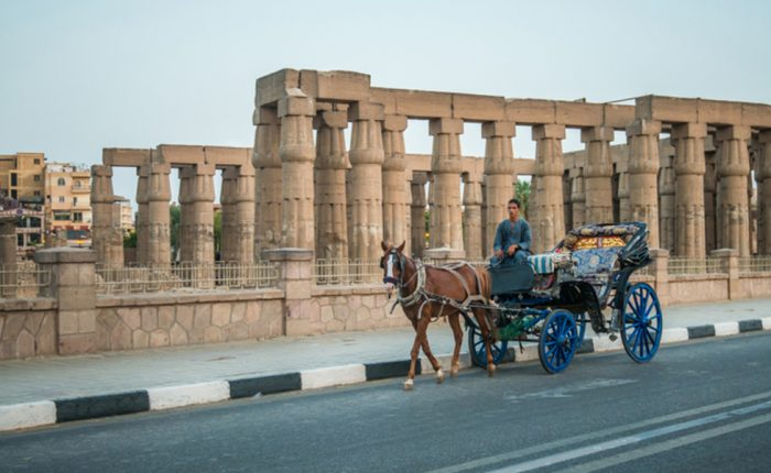 Aswan Horse Carriage - Trips in Egypt
