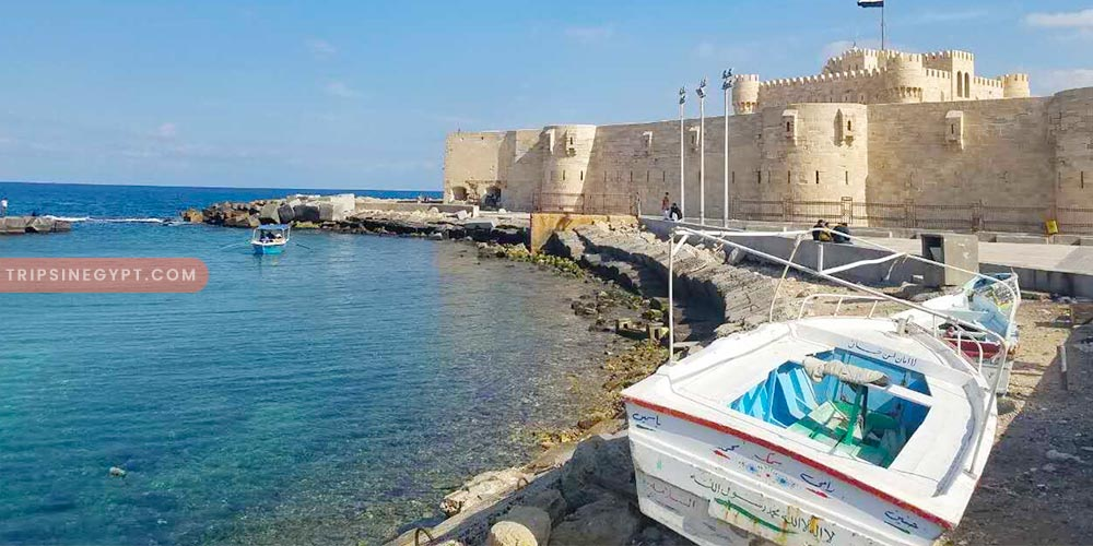 Alexandria Trip - Best Tours & Places to Visit from El Gouna - Trips In Egypt
