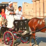 Luxor Horse Carriage Trip - Trips In Egypt