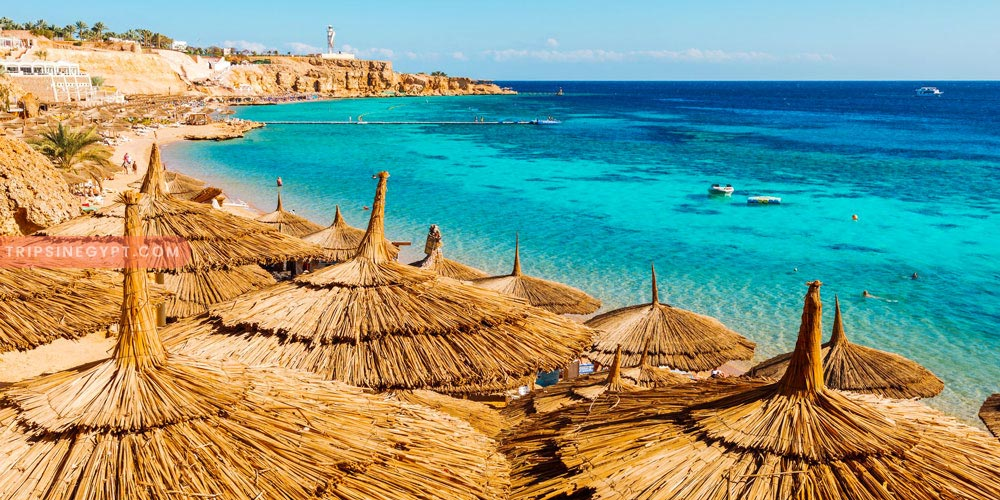 How to Enjoy the Best Excursions While Being In Safaga Port - Trips In Egypt