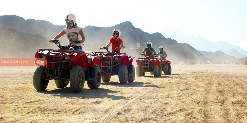 Safari Trip - Best Tours & Places to Visit from El Gouna - Trips In Egypt