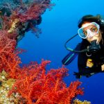 Scuba Diving Excursion In Marsa Alam - Trips In Egypt