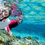 Snorkeling Excursions In Marsa Alam - Trips In Egypt