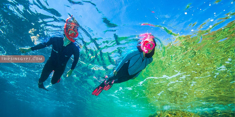 Snorkeling Trip - Best Tours & Places to Visit from El Gouna - Trips In Egypt