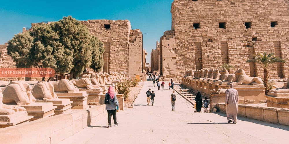Types of Egyptian Holidays & the Best To Do - Trips In Egypt