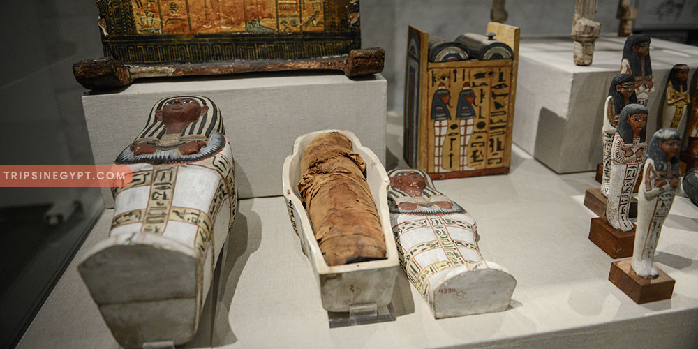 Artifacts & Mummies That Display in NMEC - Trips In Egypt