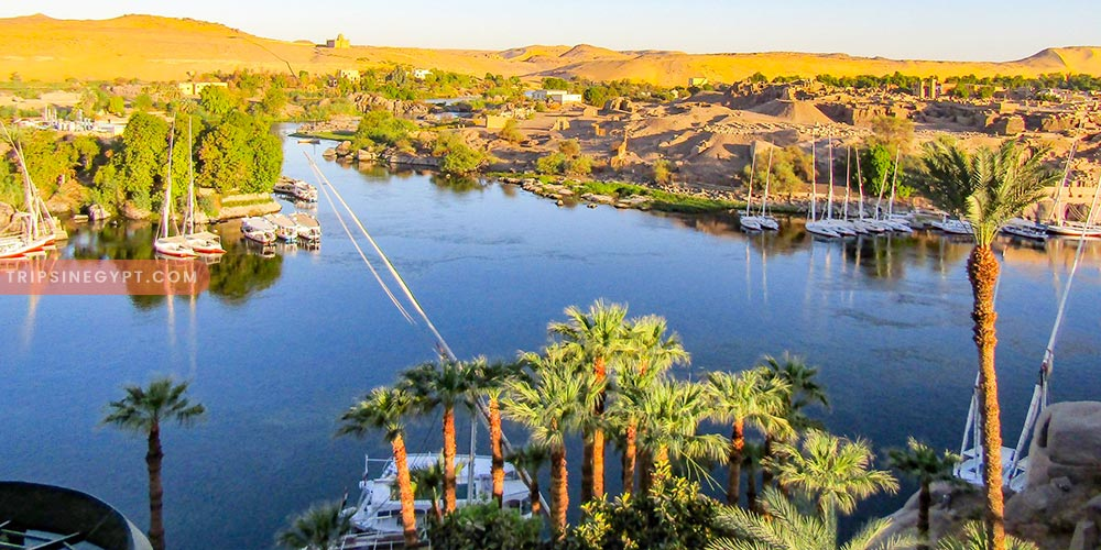 Aswan Islands - Best Places to Visit In Aswan City - Trips In Egypt