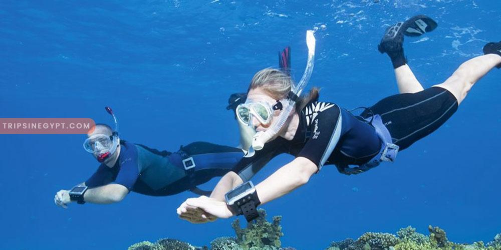 Snorkeling - Trips In Egypt