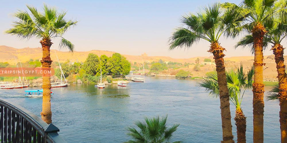 The Princess Ferial Park - Best Places to Visit In Aswan City - Trips In Egypt